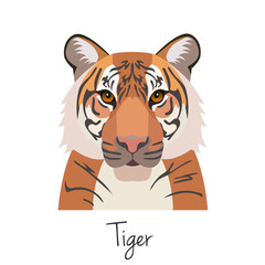 vector tiger head isolated. Flat style, cartoon object