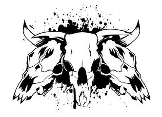 skulls bulls
