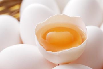 たまご Eggs