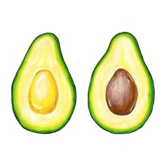 Hand drawn avocado sketch, realistic delicious illustration, isolated on white background. Vector illustration.
