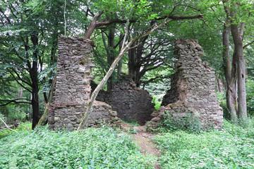 Ruins Of The Church Saint Apollonia