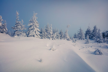 Incredible winter morning in Carpathian mountains with snow cove