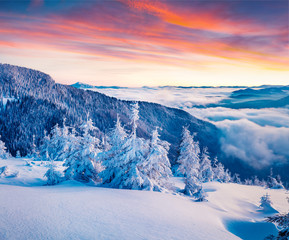 Fantastic winter sunrise in Carpathian mountains with snow cover