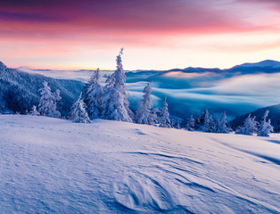 Incredible winter sunrise in Carpathian mountains with snow cove