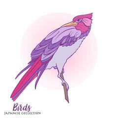 Japanese birds. Stock line vector illustration. This illustratio
