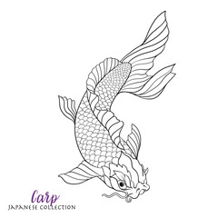 Japanese carp fish. Coloring book for adult. Outline drawing col