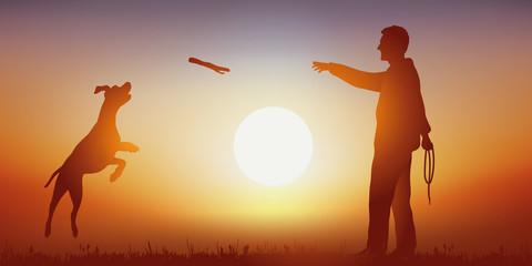 Chien - Bâton - Coucher de soleil - obéissance