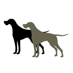 pointer Dog Vector illustration style Flat