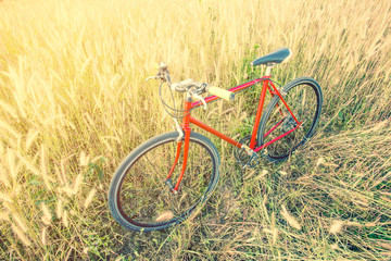 red bicycle in morning light,soft and vintage