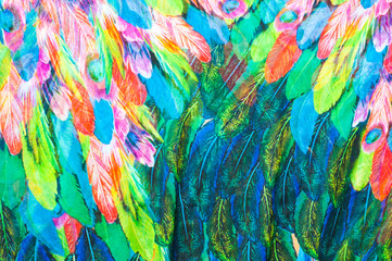 texture of silk fabric. background. colorful fairy feathers bird