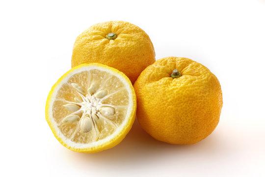 柚子 Yuzu. Japanese citron