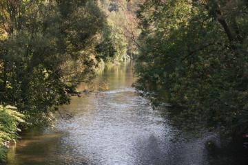 Ruhiger Fluss Wupper an einem sonnigen Tag