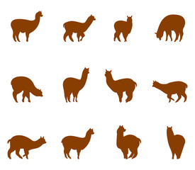 Alpaca and llams emblems collection.
