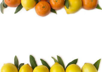 Mandarins and lemons on white background. Fruits at border of image with copy space for text. Top view..