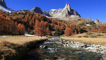 Fotomurales - River and Larch trees in Vallee de la Claree, France, during a clear day in autumn.