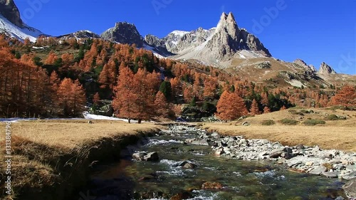 Fotomurales River and Larch trees in Vallee de la Claree, France, during a clear day in autumn.