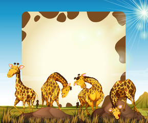 Border template with many giraffes in the field