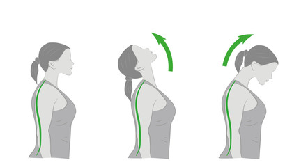 exercises for the neck and head. vector illustration.
