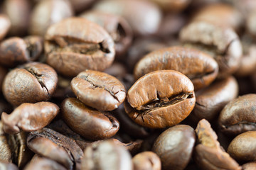 Seeds of coffee in the pile / Blurred and Select focus specifically spot image