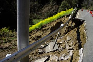崖崩れと菜の花畑