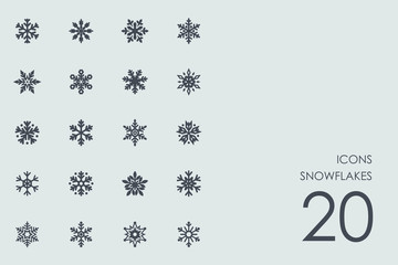 Set of snowflakes icons