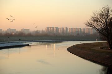 Fototapeta Rzeka Odra, kajaki, ptaki i bloki mieszkalne  tle, zachód słońca. obraz