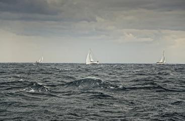 Storm race