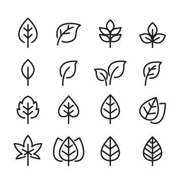 leaf line icon set