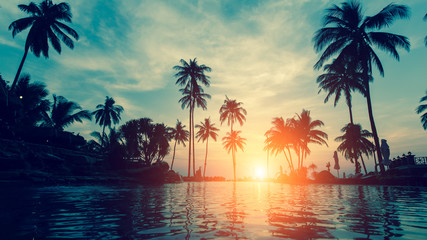 Foto op Canvas Bomen Beautiful tropical beach with palm trees silhouettes at dusk.