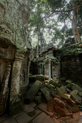 The stones and trees growing out ruin of Ta Prohm, Angkor Wat