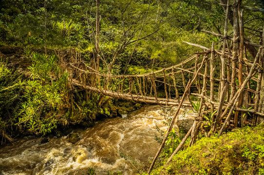 Simple bridge near wamena