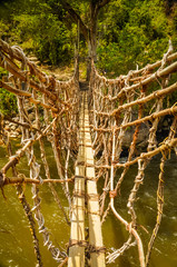 Bamboo bridge in Trikora