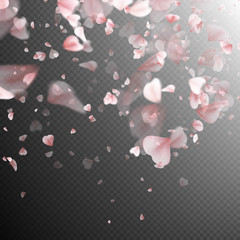 Pink sakura petals background. EPS 10