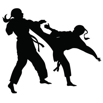 Silhouette of athletes involved in martial arts sparring