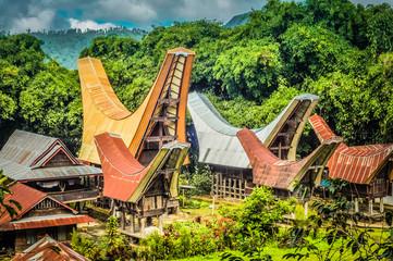 Saddleback roofs in Sulawesi