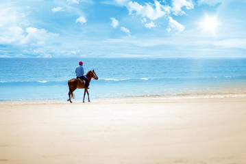 ride on the beach on a sunny day