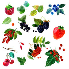 watercolor illustration of a set  different berries image. transparent   shades. Labels, background, card, pattern