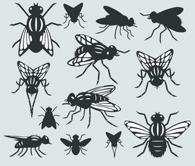 A set of silhouettes of flies