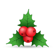 Realistic Holly berries icon, vector. Simple mistletoe decorative red and green illustration.