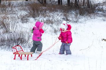 Kids, little girls, sisters sledding in the winter forest. Winter fun for children.