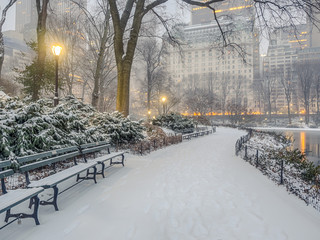 Printed kitchen splashbacks New York Central Park, New York City snow storm