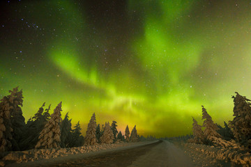 Northern Lights - Aurora borealis over snow-covered forest. Beautiful picture of massive multicoloured green vibrant Aurora Borealis, Aurora Polaris, also know as Northern Lights in the night sky.