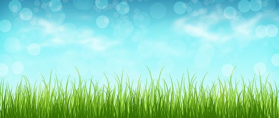 Grass and blue sky with clouds, bokeh. Spring background. Panora