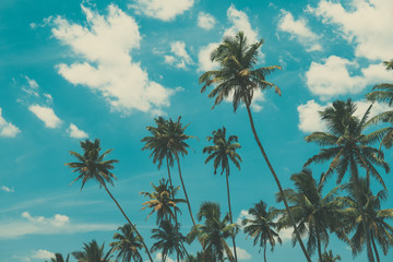 Palm trees on tropical beach, vintage toned