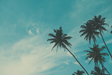 Palm tree on tropical beach, vintage toned