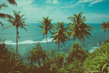 Tropical coast with palm trees above the ocean, vintage toned