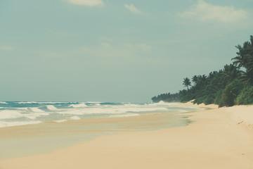 Tropical beach, vintage color stylized