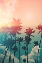 Coconut palm trees on tropical ocean beach, vintage toned and retro color stylized with film light leak