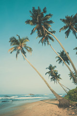 Tropical beach with palm trees, vintage color stylized