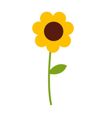 cute flowers isolated icon vector illustration design